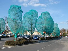 Shrink wrapped trees (geograph 3399306).jpg
