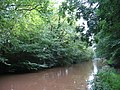 Shropshire Union Canal at Brownhills Wood - geograph.org.uk - 256081.jpg