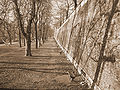 Sibiu Zid Fortificatii.jpg