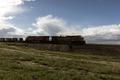 Silhouette of a passing freight train near Pueblo Memorial Airport in Pueblo County, Colorado LCCN2015632540.tif
