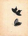 Sketchbook of Satake Shozan (Akita Senshu Museum of Art).jpg