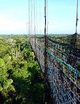 Sky-bridge-ecuador-snd.JPG