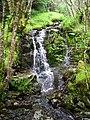 Small Waterfall on Allt nan Slat - geograph.org.uk - 511364.jpg