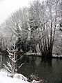 Snowing on the Canal, Woolhampton - geograph.org.uk - 333377.jpg