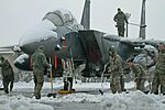 Snowy Eagle 120105-F-NI803-016.jpg