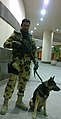 Soldier holding a German Shepherd on a leash.jpg