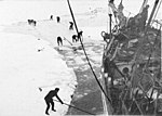 South - the story of Shackleton's last expedition, 1914-1917 - Trying to cut a way for the Ship.jpg