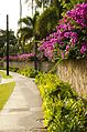 South Shore Oahu, Hawaii - panoramio (24).jpg
