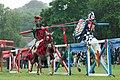 Spectacular Jousting, 2013 (9188528300).jpg