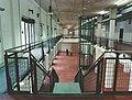 Sport und Olympia Museum Köln Innensicht.jpg