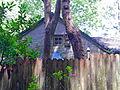 Spruce Grove School Chesco.JPG