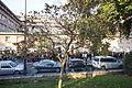 Square Saint-Lambert11.JPG