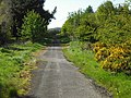 Starlaw Road - geograph.org.uk - 1306389.jpg
