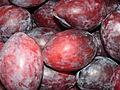 Starr 070730-7798 Prunus domestica.jpg