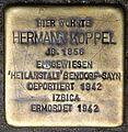 Stolpersteine Krefeld, Hermann Koppel (Kölner Straße 25).jpg