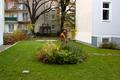 Stolzenthalergasse 7 Garten.png
