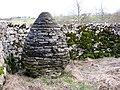 Stone Acorn - geograph.org.uk - 712319.jpg
