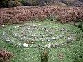 Stone Circle, Craig - geograph.org.uk - 275820.jpg