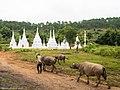 Stupas (10497109835).jpg