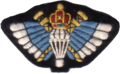 Sultan Of Oman´s Special Forces Parachute Badge.png