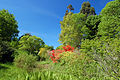 Summer @ Hillier Gardens (4655301155).jpg