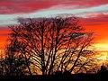 Sunset (202901935).jpeg