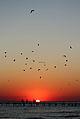 Sunset (4970133926).jpg
