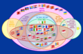 Supranational European Bodies-he.png