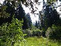 Sur le sentier du chard du beurre - panoramio (4).jpg