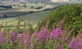 Sutton Bank MMB 09.jpg