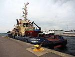 Svitzer Trym, IMO 9548354 in Fredericia harbor, pic2.JPG