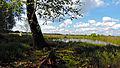 Swamp 3 by boby3000-d7tc4xb.jpg