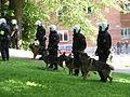 Swedish police dogs.jpg
