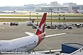 Sydney Airport, Qantas Terminal (4852830223).jpg