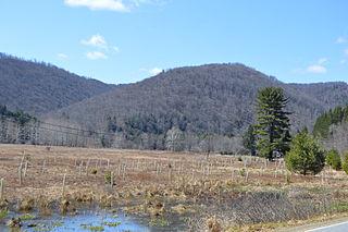 Sylvania Township, Potter County, Pennsylvania Township in Pennsylvania, United States