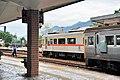 TRA DR3000 and DR2700 at Yuli Station 20090104.jpg