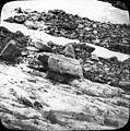 Table au glacier de la Maladetta, Luchon (environs (2557464601).jpg