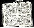 Tagebuchaufzeichnungen Johann Adolf Wolff Metternich 1642.jpg