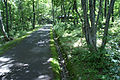 Tajima Plateau Botanical Gardens09s3200.jpg