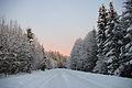 Talvine Sirtsi Sonda tee 01.jpg