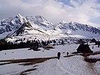 Stok narciarski - Ząb