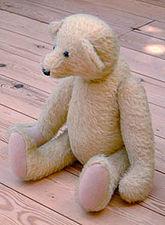 Teddy bear - Rory.JPG
