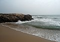 Tenneti park beach view 03.JPG