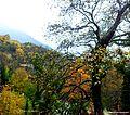 Tepelenë District, Albania - panoramio (2).jpg