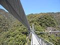 Teruha hanger bridge.jpg