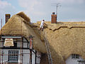 Thatching a roof (5465519400).jpg
