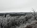 The Niagara Escarpment After a Ice Storm, Kings Forest Park.JPG