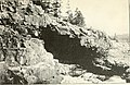 The Pine-tree coast (1891) (14595876750).jpg