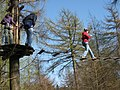 The Practice Course - GoApe -Wendover Woods - geograph.org.uk - 1237148.jpg