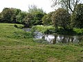 The River Went on the outskirts of Little Smeaton - geograph.org.uk - 446286.jpg